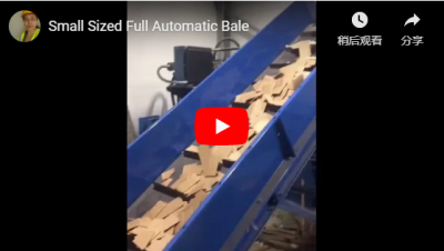Small Sized Full Automatic Baler